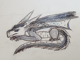 Wings of fire Whiteout Sketch by LunaTheDragonBunny