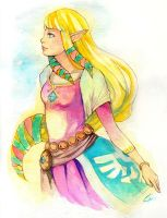 Skyward Sword: Zelda Commission by c-dra