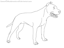 cropped APBT lineart by Akudemonicwolf