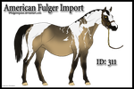 American Fulger Pregnant Import #310 - CLOSED by AniaJag