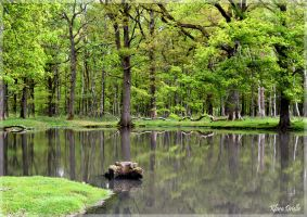 It is a green hollow where a river sings by KlaraDrielle