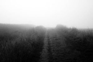 path into the fog by Mittelfranke