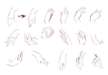 Hands by rika-dono