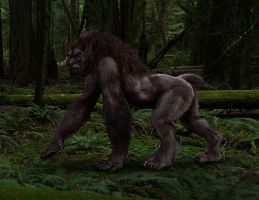 Realistic Lycanthrope v2 by H-M-M