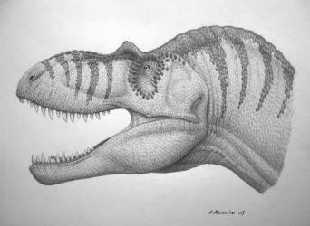 Albertosaurus sarcophagus by BrokenMachine86