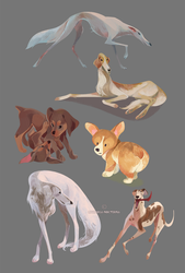 Yay Dogs by mariposa-nocturna