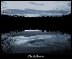 SkyReflections. by disturbed