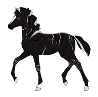 N3131 Padro Foal Design for DarkestNation by casinuba