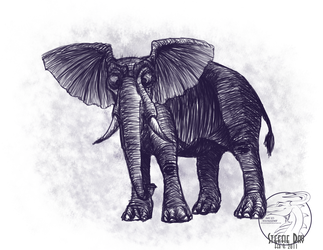 African Elephant by stevie12397