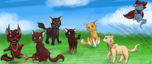 Color Blind cats by Alopiidae
