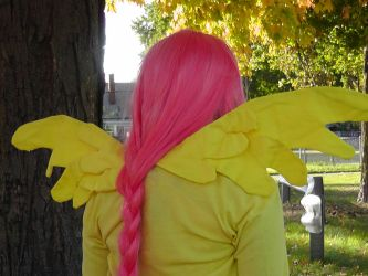 Fluttershy Back by Wierdrocks