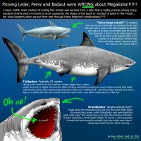 The THURTH about MEGALODON SIZE- dated April 1 by Harry-the-Fox
