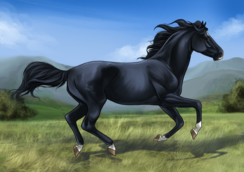 Blackwind by CSStables