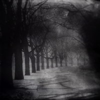 The Path Less Travelled by intao