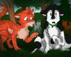 Do I have to join ThunderClan? - Smudge: Warriors by pinkbunnygirl43