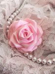 Pink Satin Rose 2 by SarahLaure