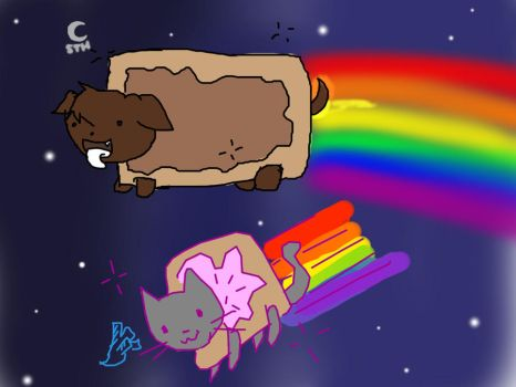 Wang Dog and Nyan Cat Collab by Umbraling