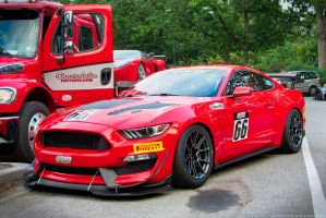 Mustang GT4 RaceCar by SeanTheCarSpotter