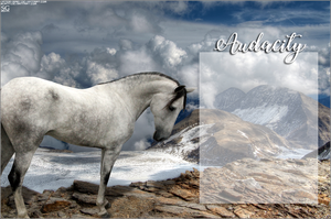 AUDACITY's Andalusian Layout by magsislove