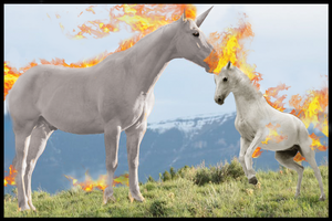 No 77 and 78 Wild like Fire Ponyta and Rapidash by Hyperagua