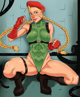 Cammy by evilsull