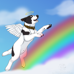 All Dogs Go To Heaven by Lunenka