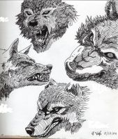 Wolf Pack by HWolfer