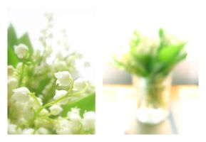 lily of the valley by LesEssences