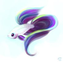 Rare Betta by Majoh