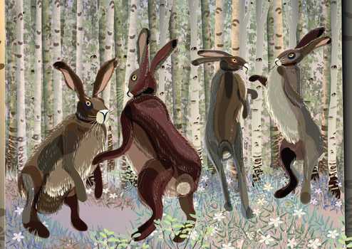 Hare story: party time by Starsong-Studio