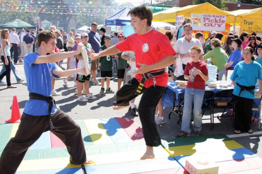 Karate Day at Street Fair 4 by quietstorm2