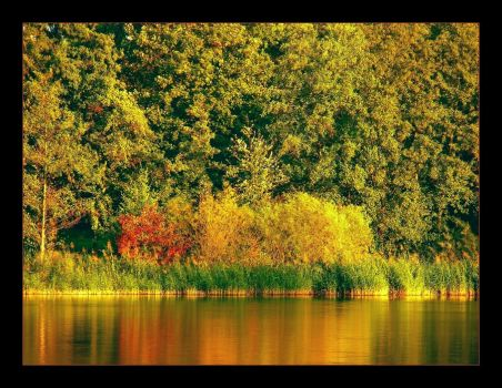 Autumn colors IV by hamti