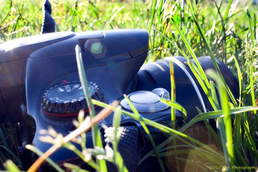 Camera in the Grass by ThrashingZombie