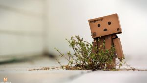 Adventures of Danboard by ArtbyVins