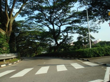 Crossing Abbey Road by angelsxcomex