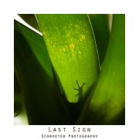 .:Last Sign:. by matze-end
