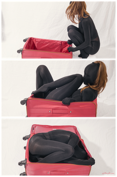 Luggage encasement by PascalsProxy