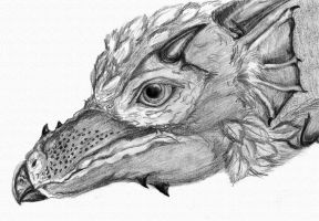 Amphiptere: Feathered Dragon by Bennett-Burks
