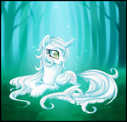 Clarity by Centchi