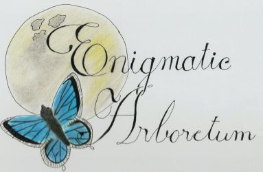 Logo: Omited Flower by molasses0205