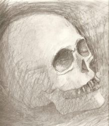 Skull by l3ubbles