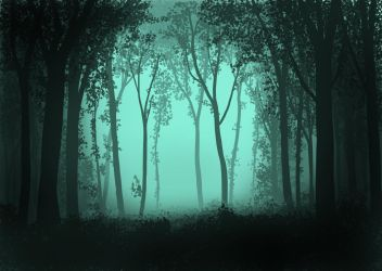 A Dark forest by lauris71