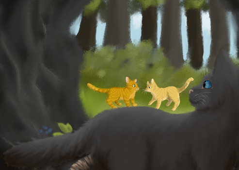 Cinderpelt the shipper by Liljatupsu