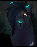 [AT] The Commander by loewweh
