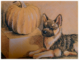 Douglas Sargeant Shepherd - Halloween Sketch by The-Toy-Chest