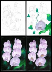 Orchids - My 1st Oil Painting - WIP by TigerK0690