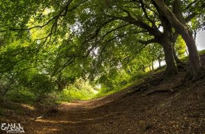 Walk Through The Holloway by EmMelody