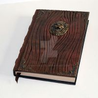 Lion Tome wood grain with ornate corners 2 by RaptorArts
