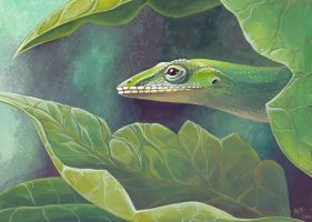 The lizard hides in foliage by MaryDec