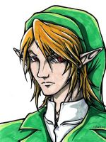 Link by Guard-of-Minasteris